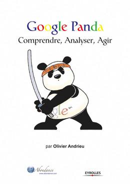 Google Panda - Olivier Andrieu - Eyrolles